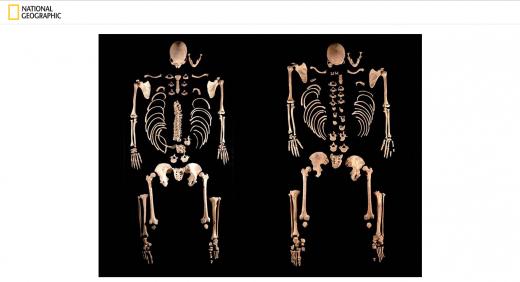 Ancient Spanish DNA